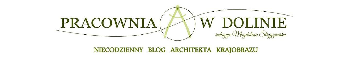 Zielona Pracownia Blog