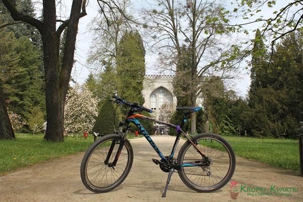 kórnik arboretum rower