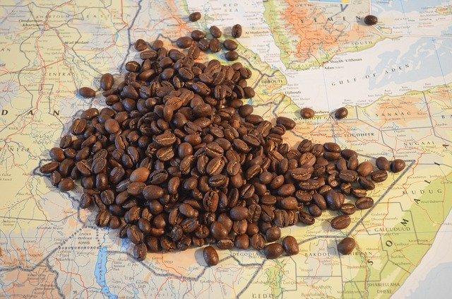 Pochodzenie kawy