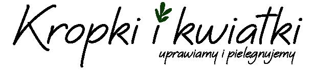 Blog ogrodniczy Kropki i Kwiatki - rośliny i kwiaty domowe i doniczkowe